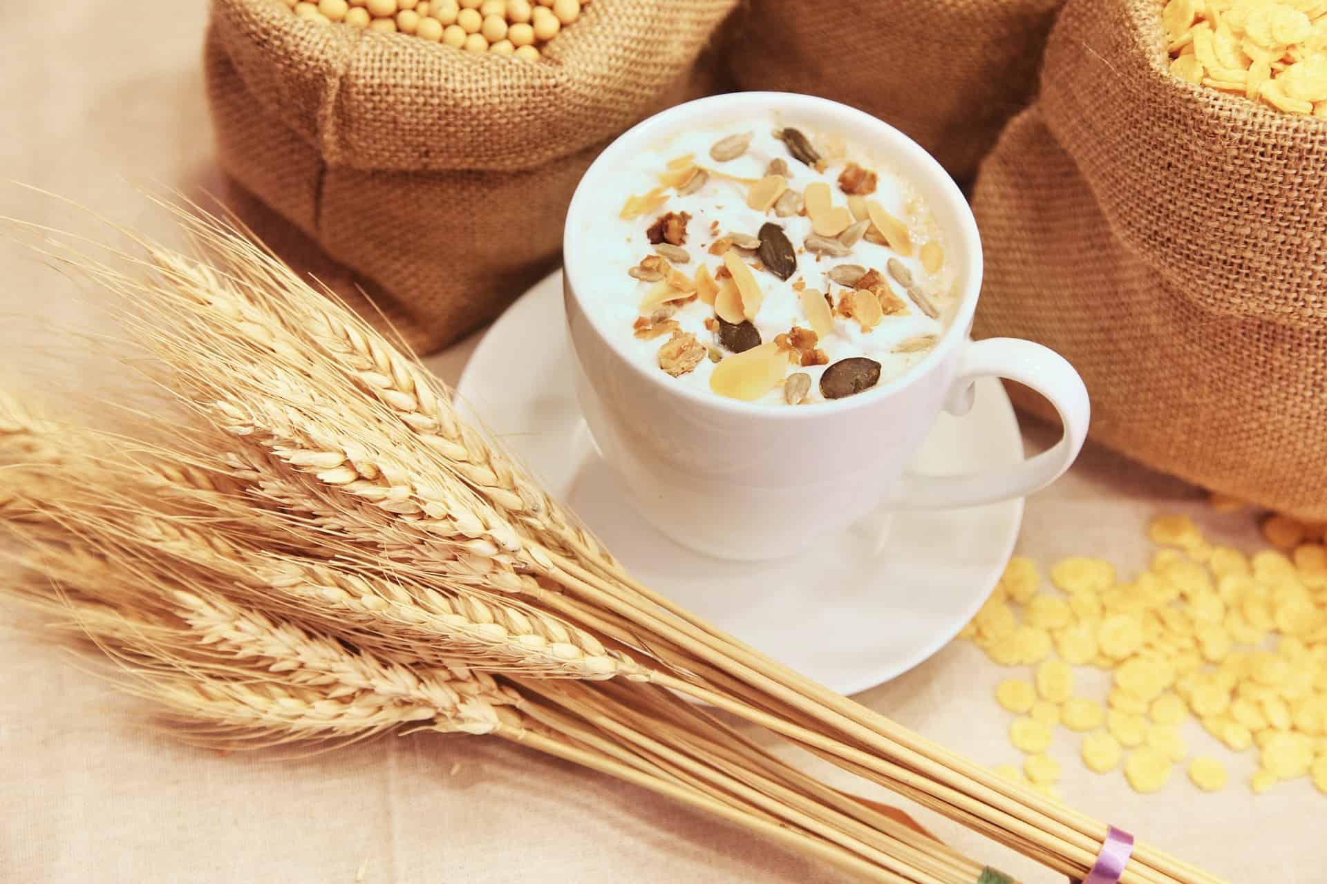 Getreidemühle: Test & Empfehlungen (02/21)