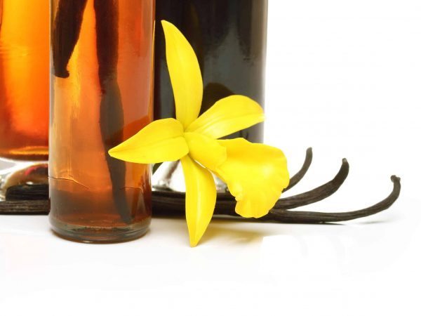 61544486 – vanilla extract, pods and orchid flower isolated on white background