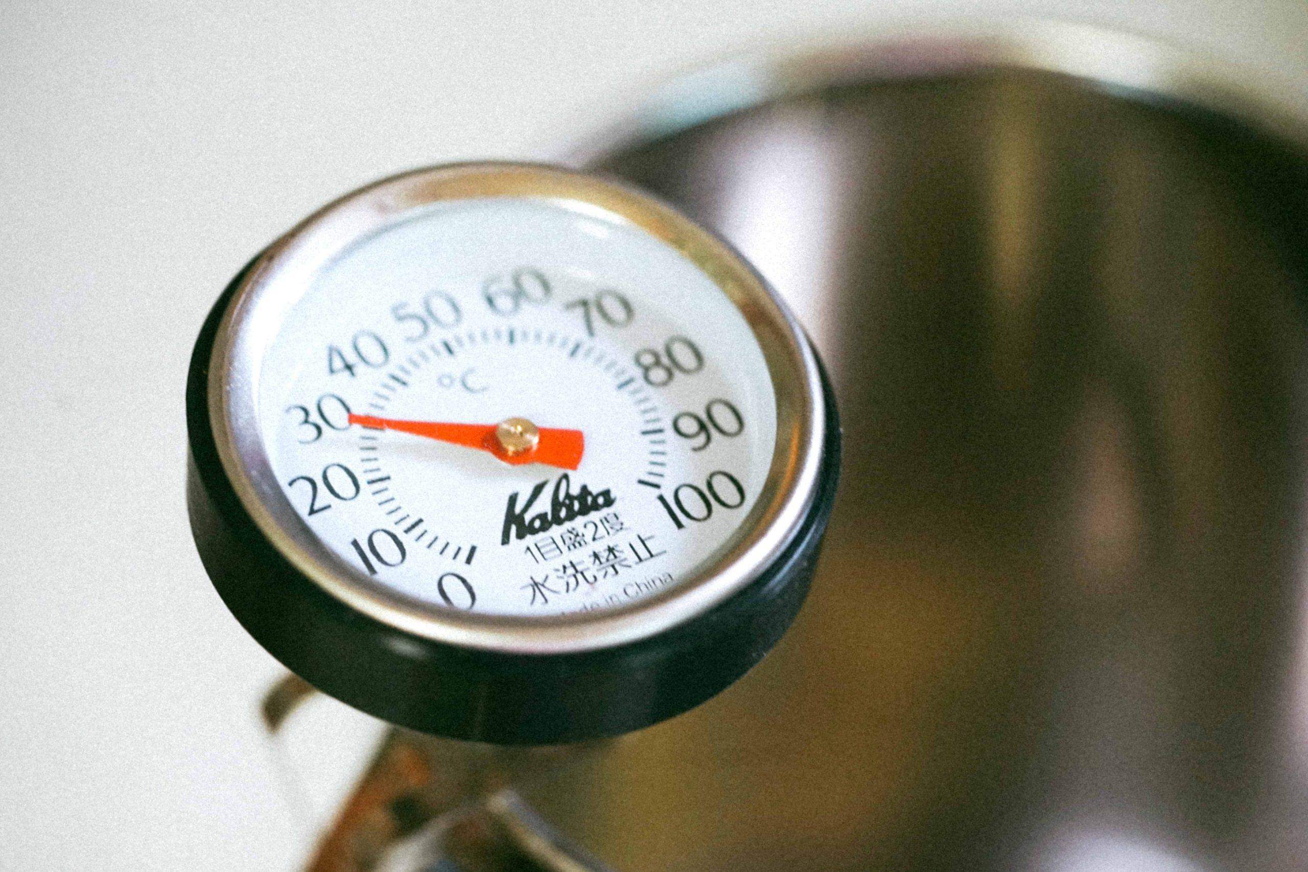 Backofenthermometer: Test & Empfehlungen (09/20)