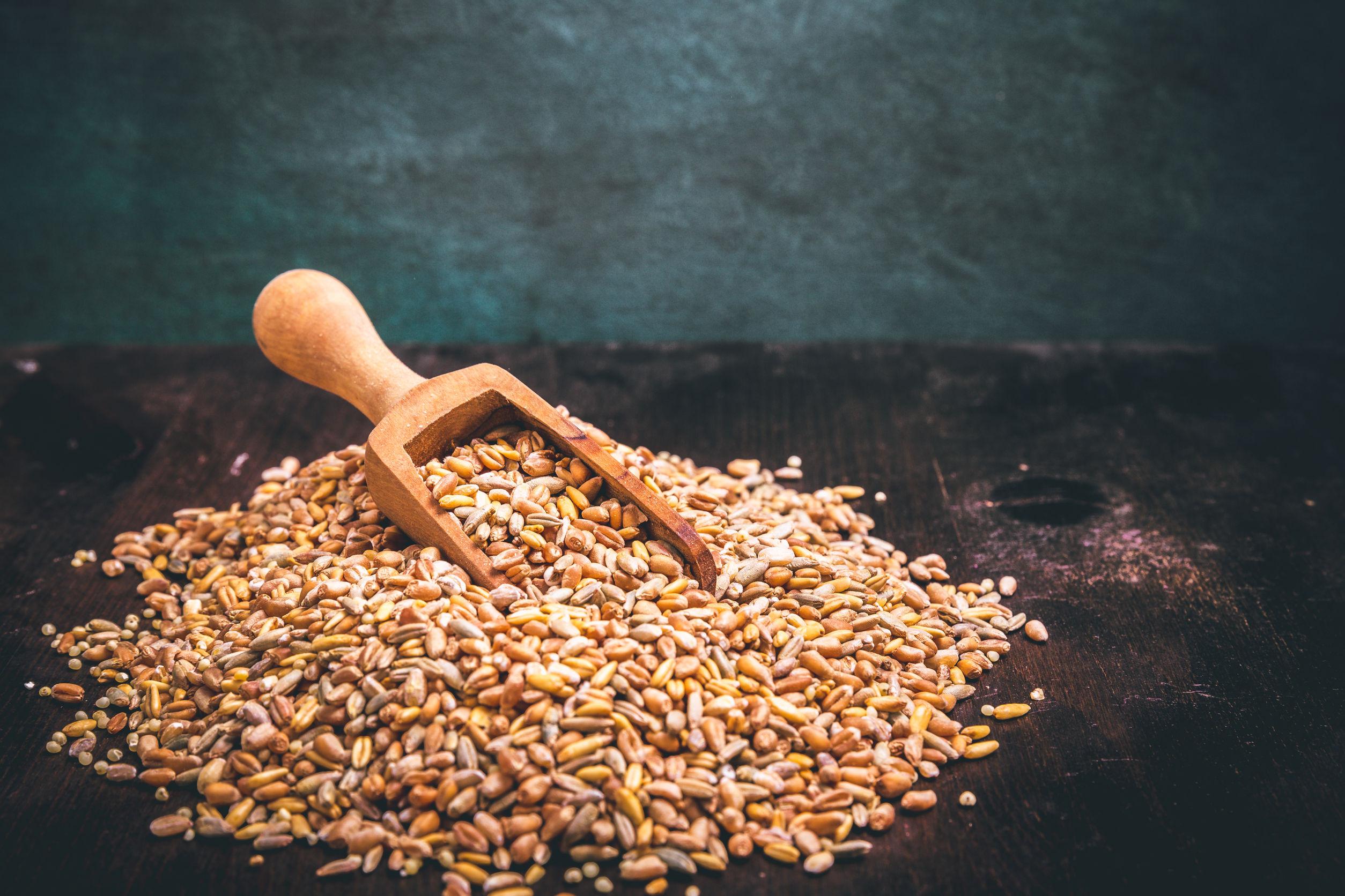 Getreidemühle Kitchenaid: Test & Empfehlungen (08/20)